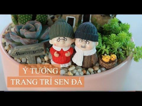 Ý tưởng trang trí sen đá 8 | Succulents DIY - www.vuonsenda.vn