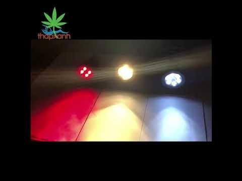 Đèn chiếu tiểu cảnh năng lượng mặt trời SAN-4, Đèn trang trí sân vườn