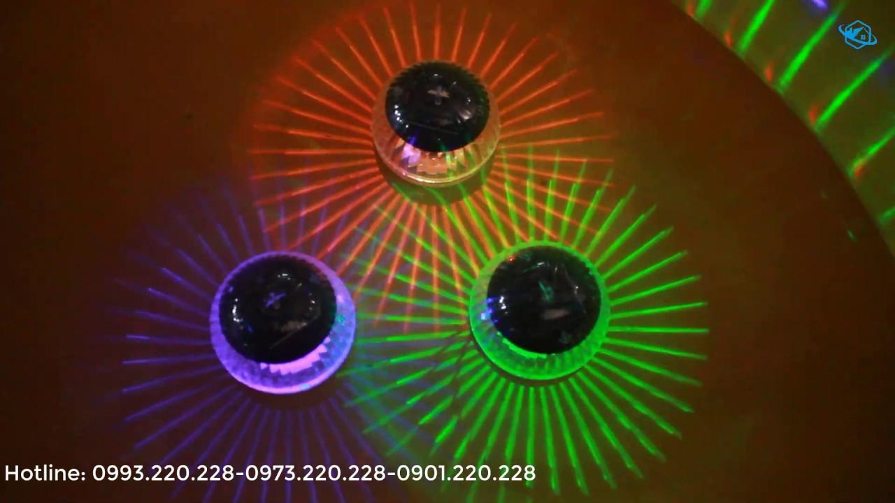 Đèn quả cầu thả hồ