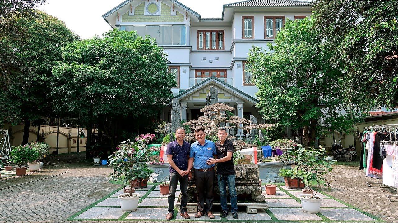 Đi thăm tác phẩm siêu cây cảnh triệu đô làm khuynh đảo giới chơi cây ở Việt Nam một thời
