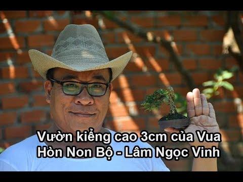 #07 Vườn cảnh tí hon cao 3 cm của vua hòn non bộ Lâm Ngọc Vinh   Du Lịch Bụi   Zen Nguyễn 2019