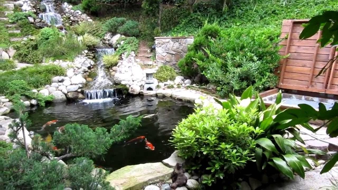 Tiểu cảnh sân vườn nhỏ đẹp Những video đã mắt nhất