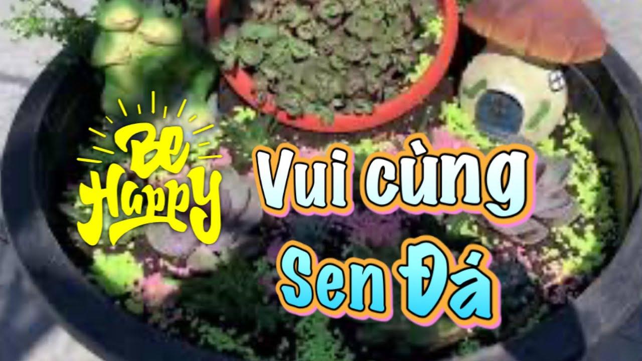 #33. Vui cùng Sen Đá (Fun with the Succulents)