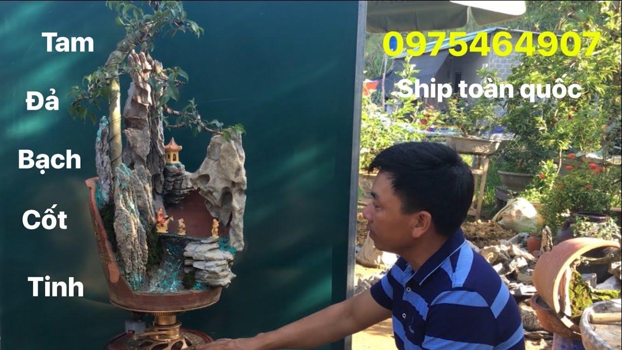 Báo giá 03 tác phẩm tiểu cảnh bonsai mini mới nhất   SON 83