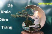 Báo giá tiểu cảnh bonsai mini để bàn mới nhất | SON 83