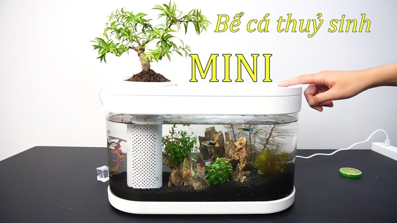 Bể Cá Thủy Sinh Mini Xiaomi - Dân Chơi Cá Phải Sở Hữu Ngay