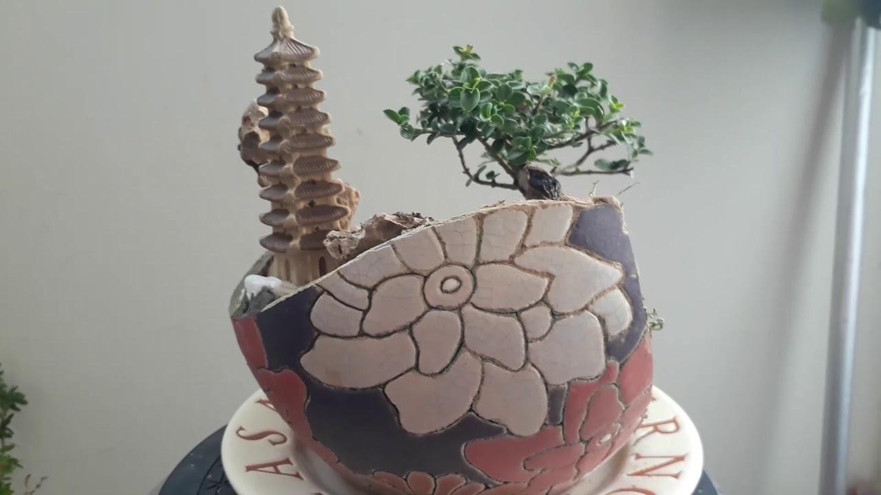 Bonsai mini tiểu cảnh mini giá rẻ