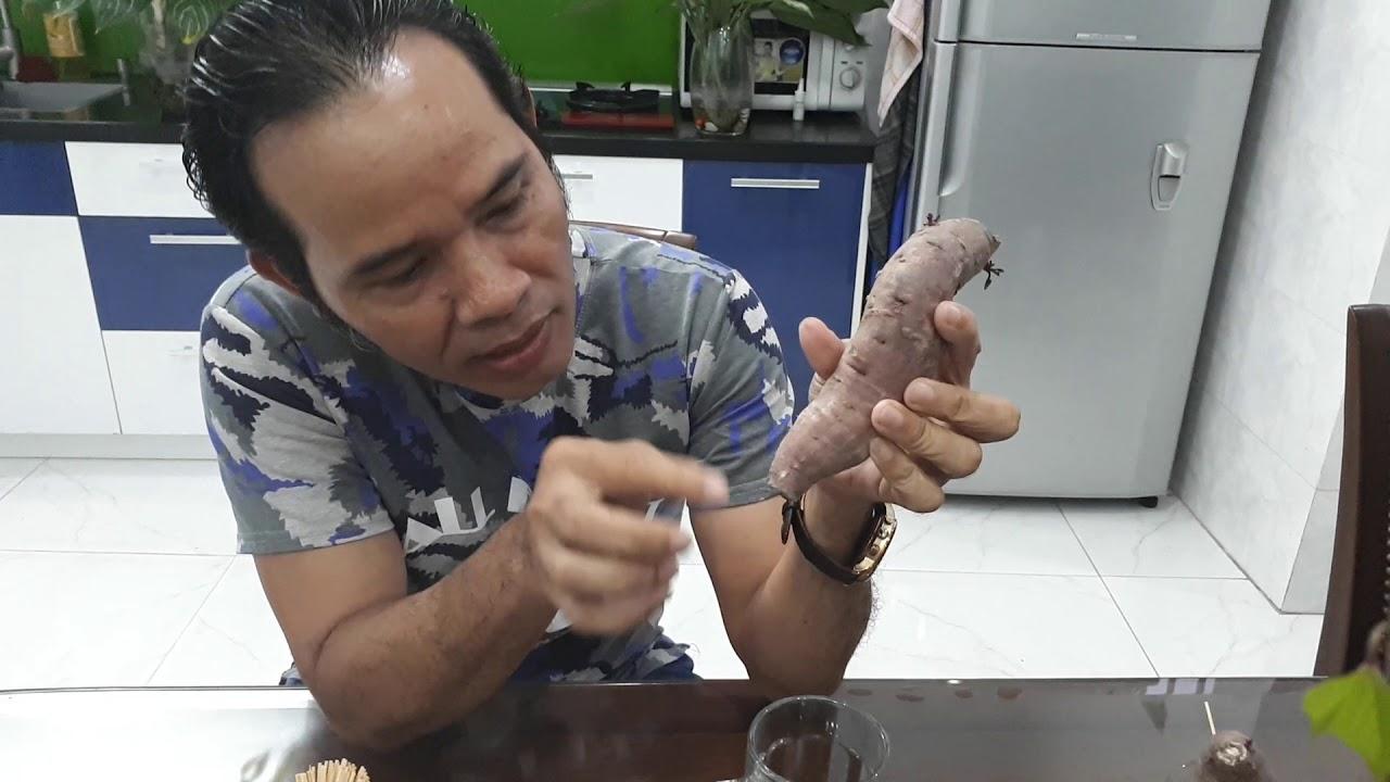 Cách làm cây khoai lang thủy canh tại nhà
