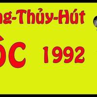 Cây Phong Thủy Hút Tài Hút Lộc Cho Tuổi Nhâm Thân 1992