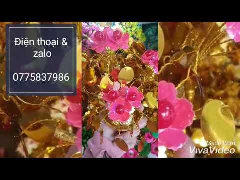 Cây cành vàng lá ngọc/ Cây kim tiền cao 35cm