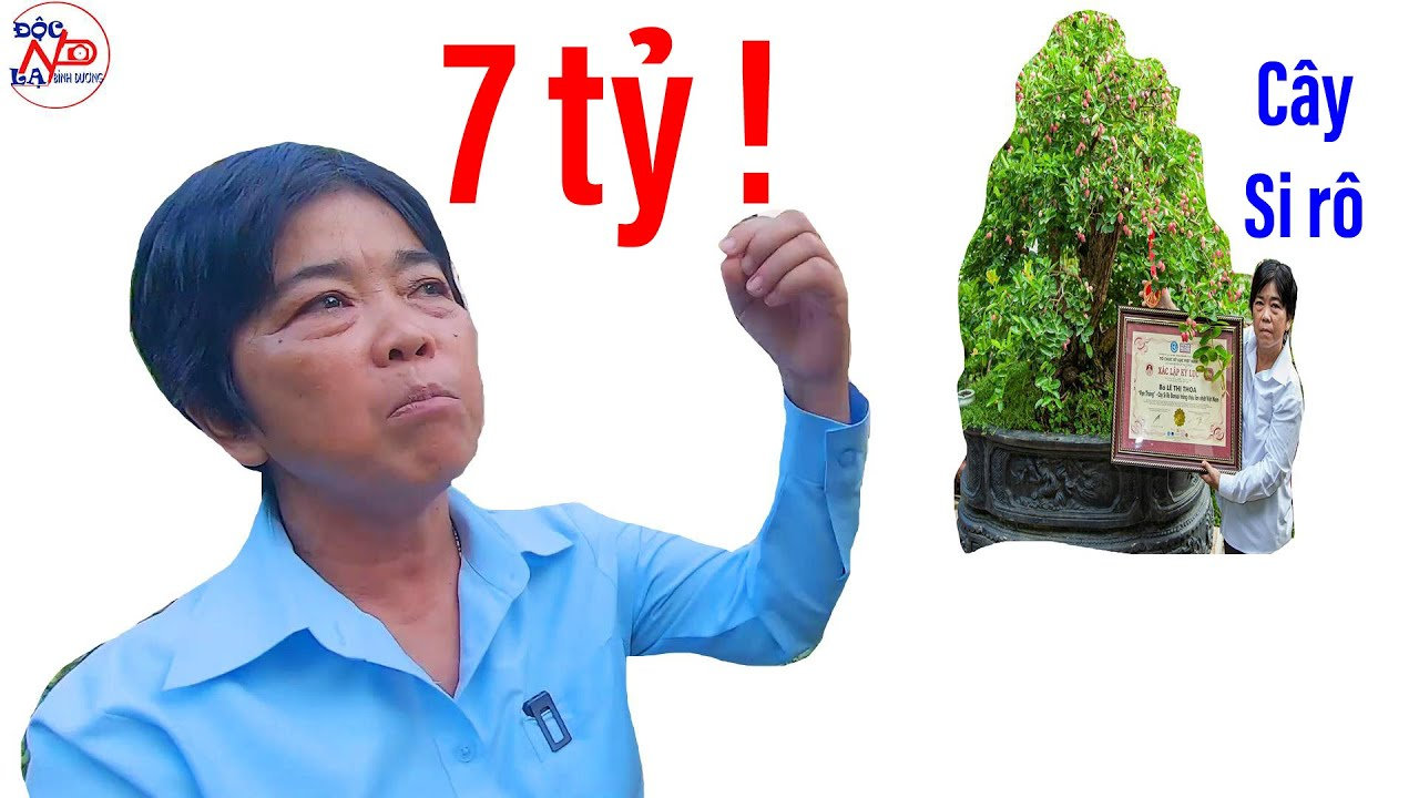 Cây cảnh vừa đạt kỉ lục VN, bà chủ hô bán 7 tỷ! II ĐỘC LẠ BÌNH DƯƠNG