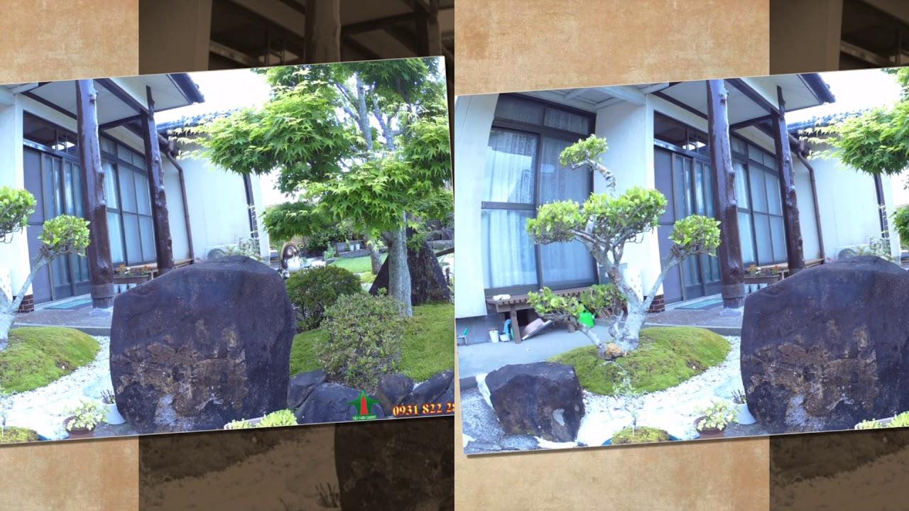 Công trình cảnh quan mẫu Sân Vườn, Hòn Non Bộ, Hồ Cá Koi