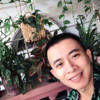Chàng trai Hà Nội chia sẻ bí quyết trồng cả 'rừng cây' tươi tốt xanh mát trong nhà