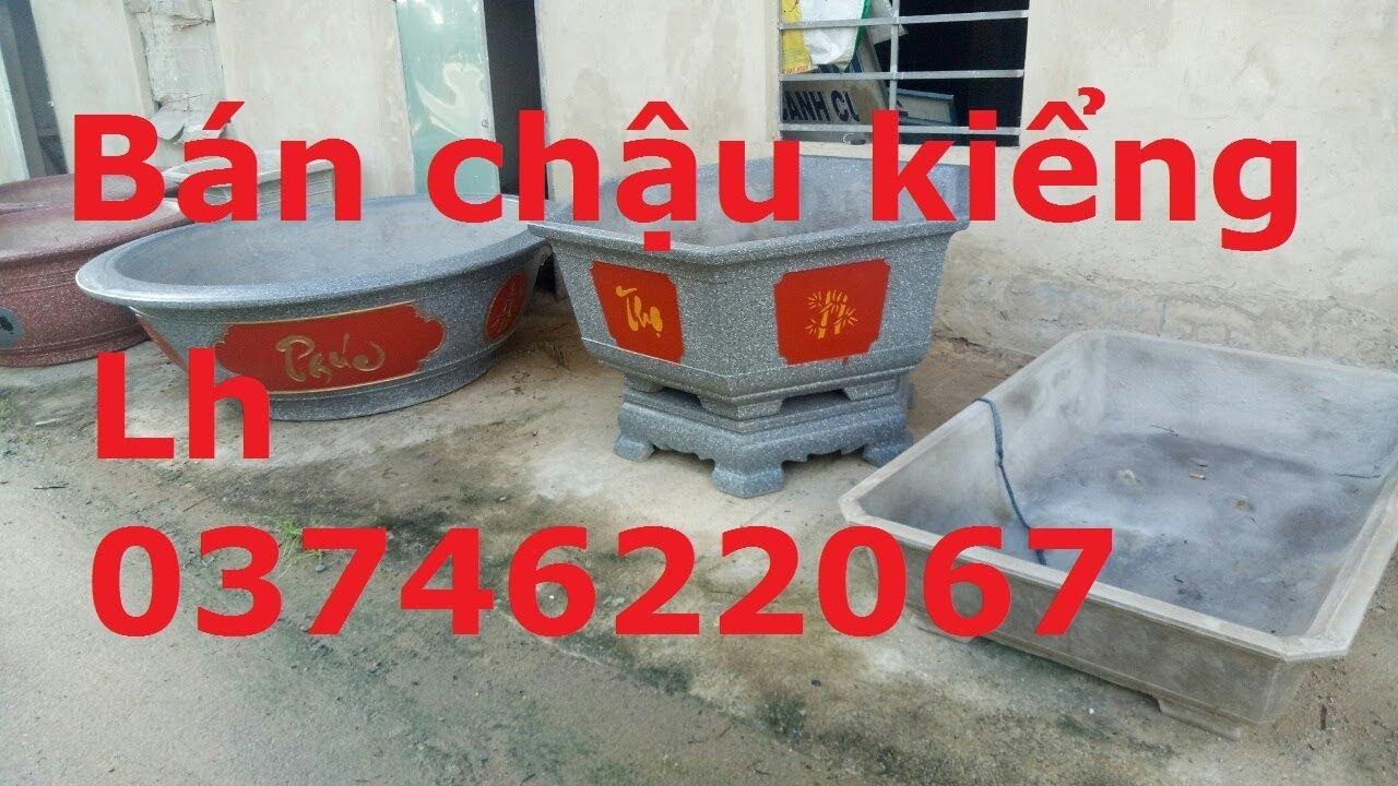 Chậu Cảnh, Chậu Kiểng, Ai Cần Mình Bán Lh 0374622067