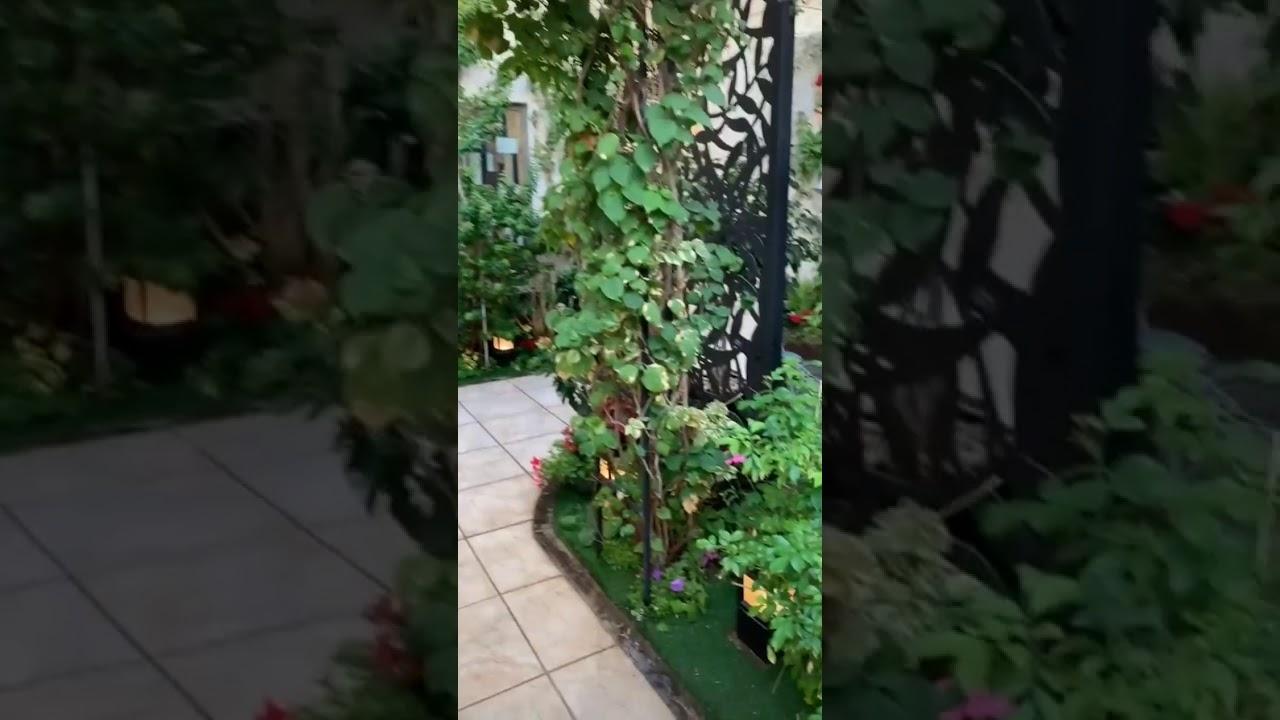 Chim cảnh, tiểu cảnh sân vườn đẹp đây là mơ ước của bao người.