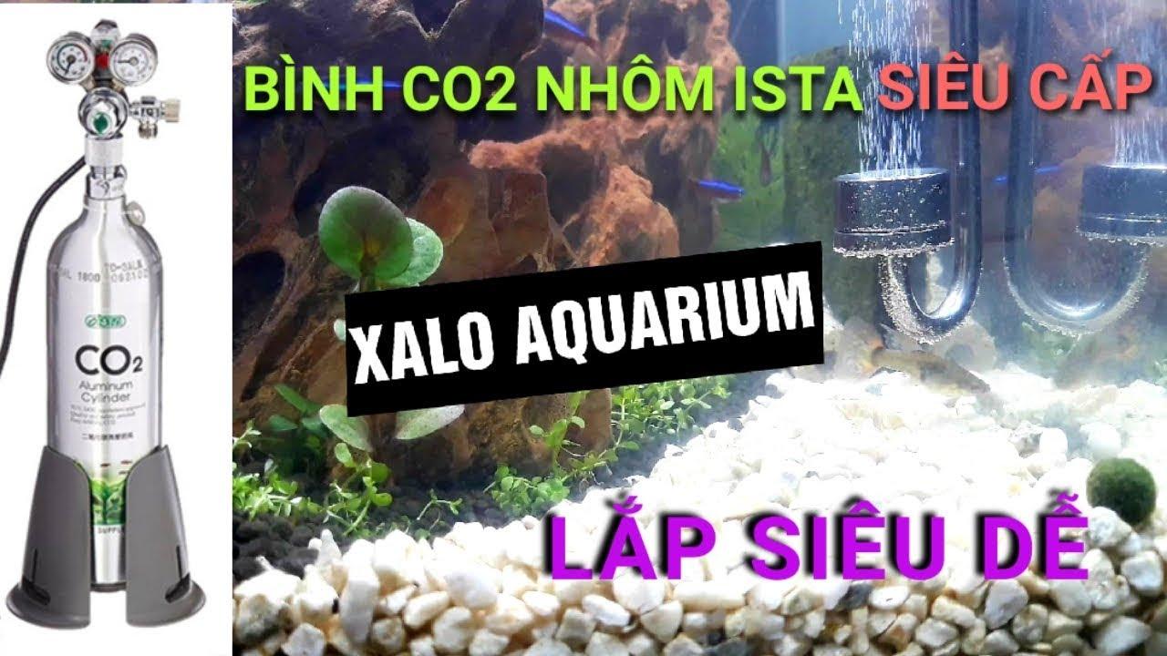 Hướng dẫn cách lắp bình co2 nhôm Ista và van điện Mufan cho bể thủy sinh siêu dễ || CMG Guppy