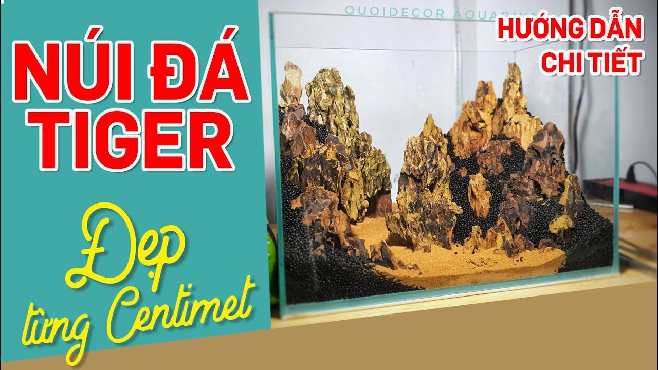 Hướng dẫn chi tiết setup hồ thủy sinh núi đá tiger rêu minifiss 40cm - Quoidecor