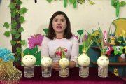 Hướng dẫn trồng cây bằng phương pháp thủy sinh - Cô Giang Thanh, Trường MN PiToong, Mường La, Sơn La