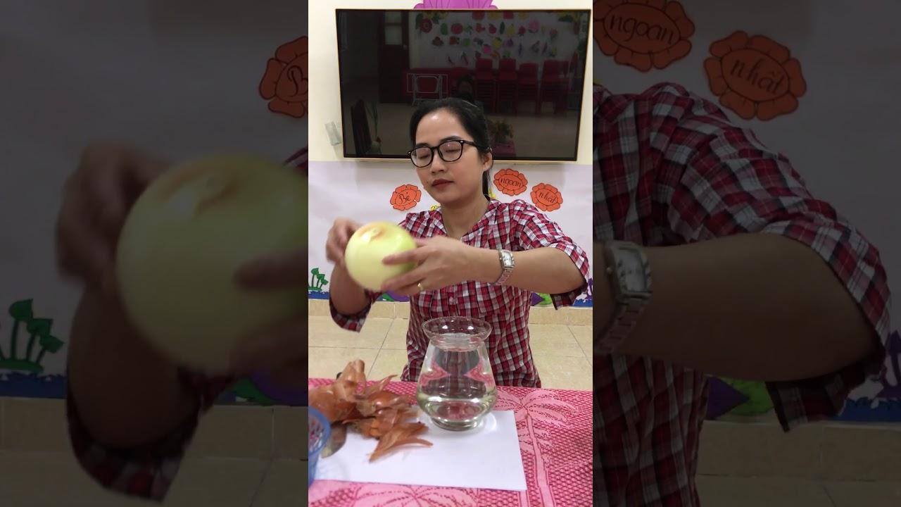 Hướng dẫn trồng cây thuỷ sinh - Cô Nguyễn Thị Thương Huyền Trường Mầm Non Tân Sỏi Huyện Yên Thế