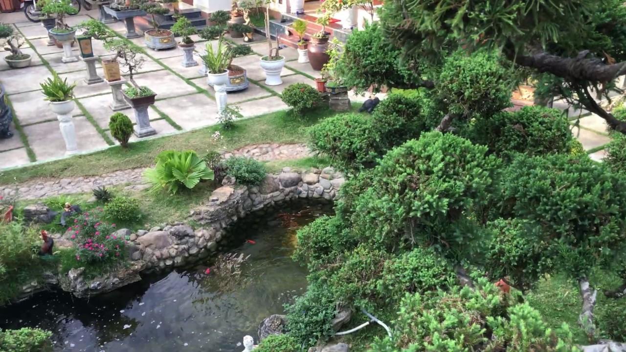 HỒ CÁ KOI SÂN VƯỜN ĐẸP - Beautiful garden koi aquarium