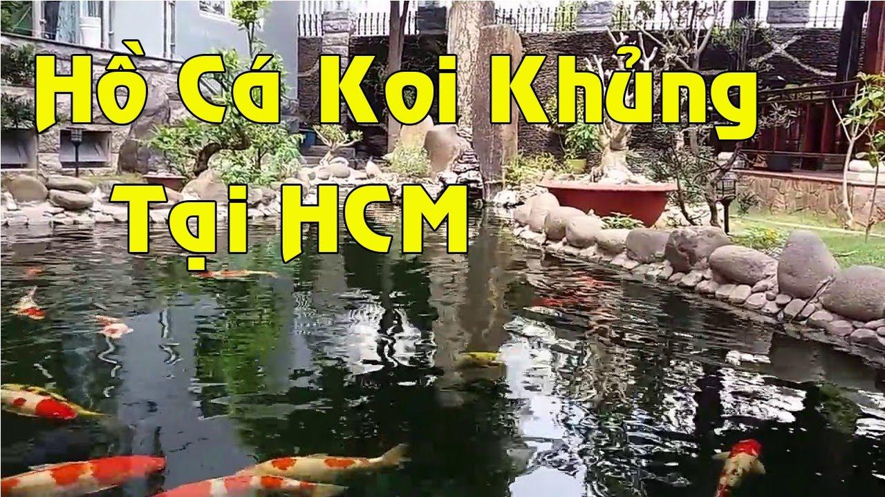 Hồ Cá Koi Siêu To Khổng Lồ, Biệt Thự Sân Vườn Đẹp | Sân Vườn Đẹp