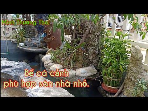 Hồ cá koi - Tiểu cảnh sân vườn.