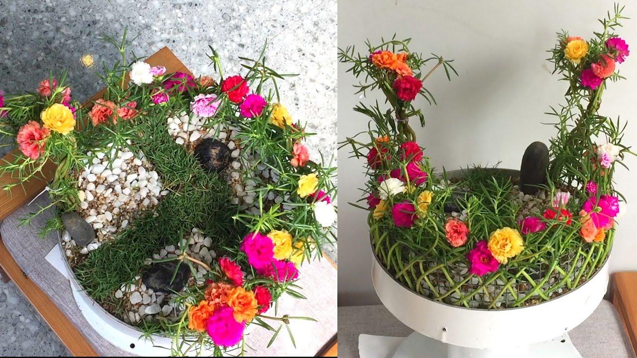 Làm hàng rào khu vườn mini bằng hoa mười giờ