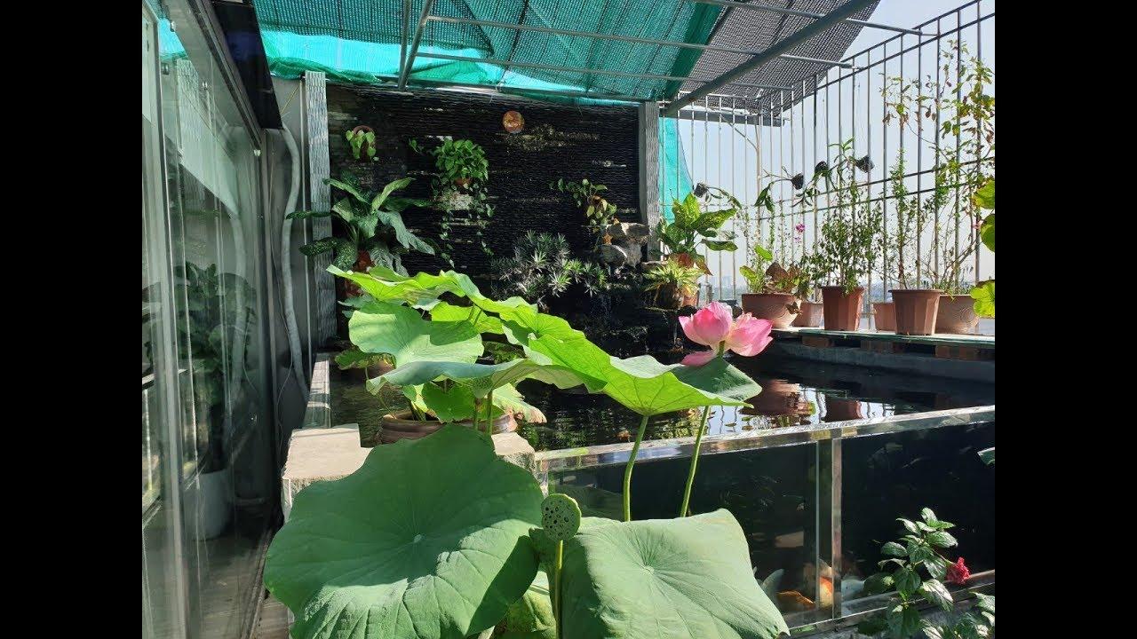 Mẫu Sân Vườn Và Hồ Cá Koi Đẹp  Trên Mái Cho Biệt Thự Tại Khu Đô Thị Thanh Hà