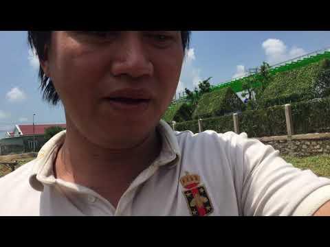Ngôi nhà xanh.chồi xanh.hình con thú cây xanh.bức tường xanh.nhà xanh mát.0909845069