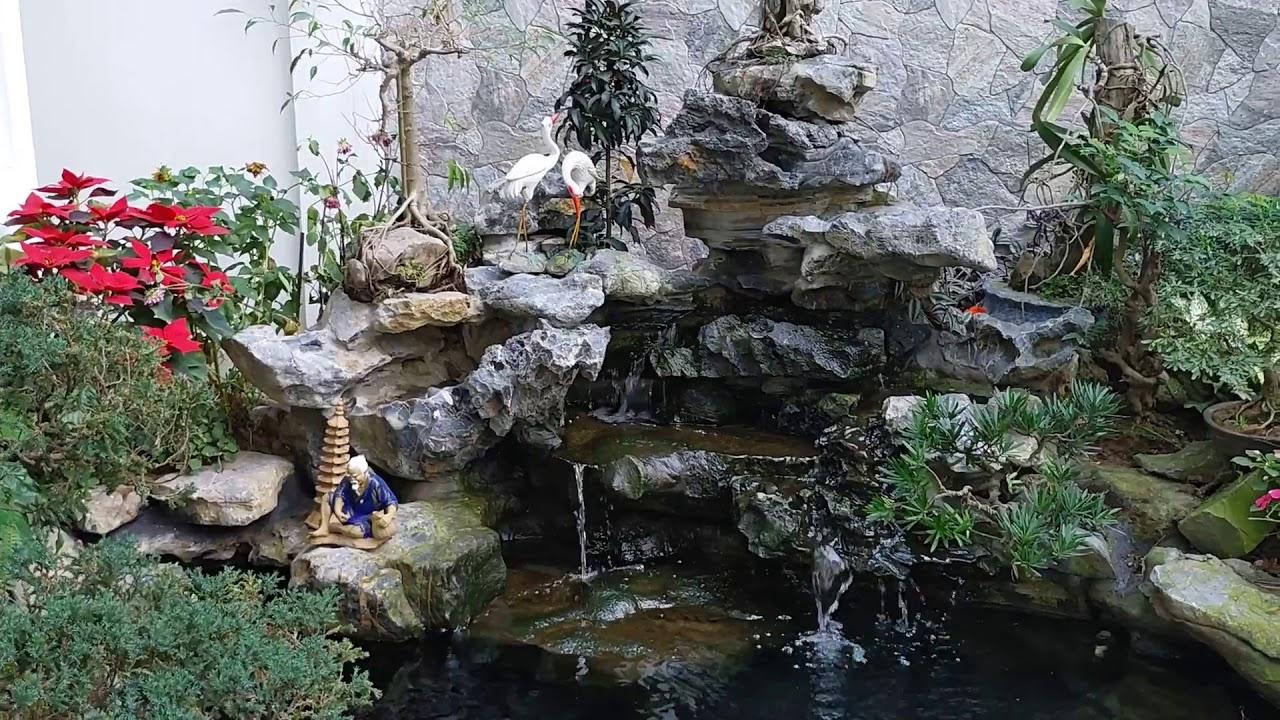 Sân Vườn hồ cá Koi Ngoài trời đẹp Nhất
