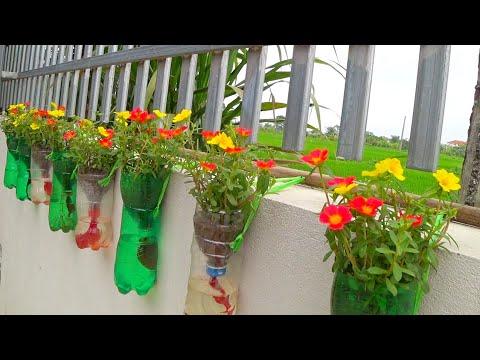 Tái Chế Chai Nhựa Thành Chậu Hoa Đầy Màu Sắc Tuyệt Đẹp Cho Ban Công hay Khu Vườn Nhỏ nhà Bạn