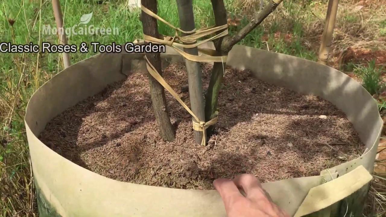Túi vải trồng cây, chậu vải trồng hoa hồng, cây giống, cây cảnh - Thoát nước cây phát triển tốt