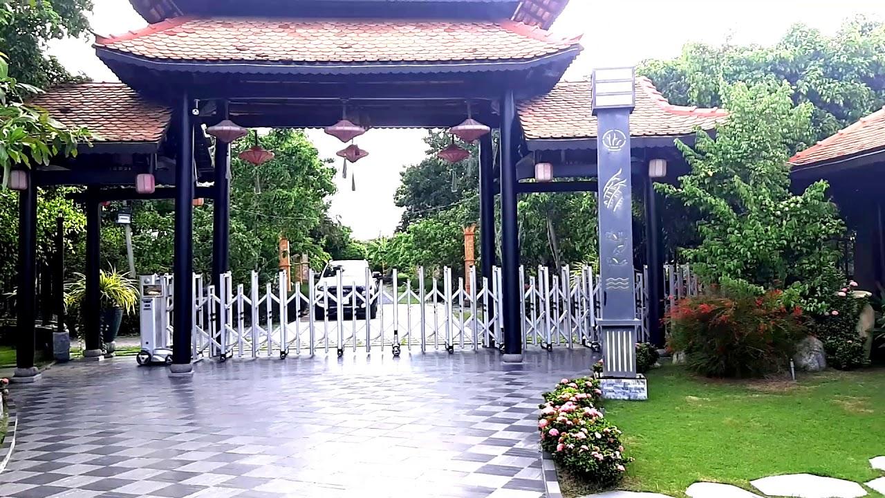 THV landscape -Resort Cần Giờ   Bảo dưỡng cảnh quan sân vườn sau 2 năm
