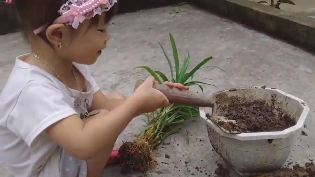 TIEU VY biết trồng hoa vào chậu cây cảnh vui nhộn NTN | TIEU VY Kids
