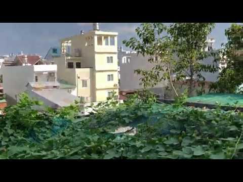Thăm Vườn Chim ,Cây Cảnh Trên Sân Thượng Mùa Dịch CoVid 19