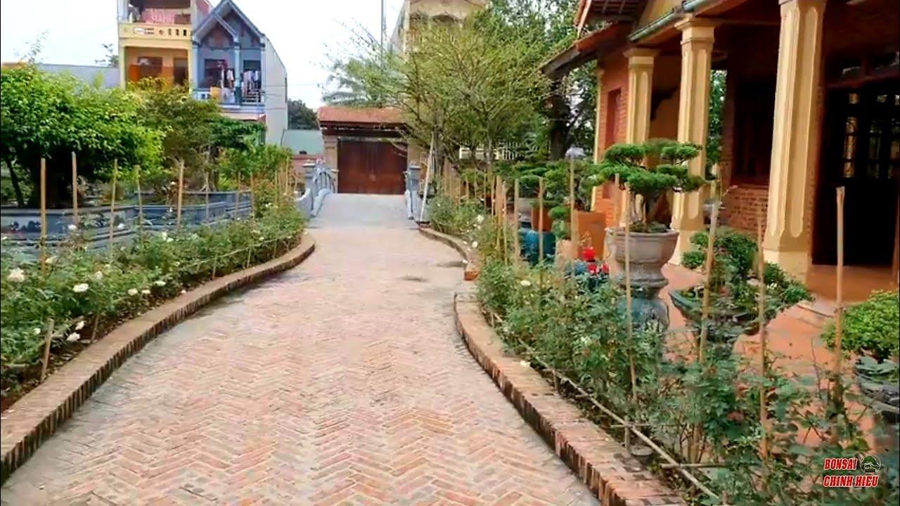 Thăm khu nhà cổ và Cây Cảnh trong khuôn viên sân vườn rộng đẹp bậc nhất Thanh Hóa.