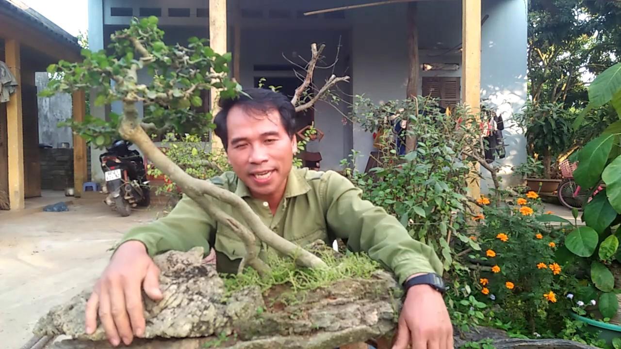 """Thay đất chậu cây cảnh cũng vội vàng bởi """"em Nhung""""."""