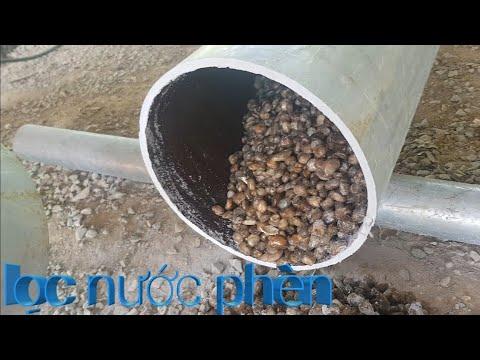 Thay nhiên liệu cây lọc nước thô_ khang lộc vlogs