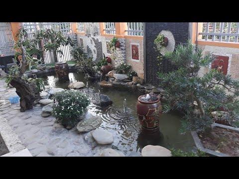 Thiết kế trang trí sân vườn đẹp