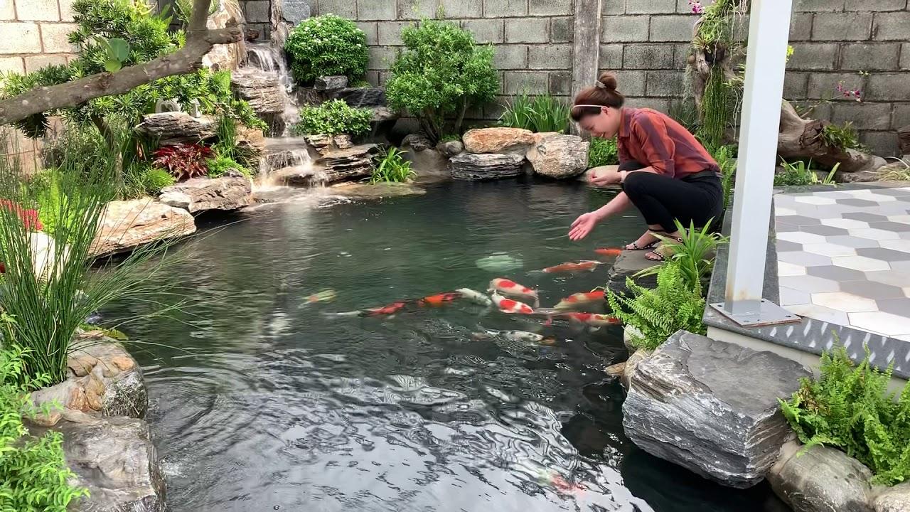 Thi công hồ cá Koi 0913452233