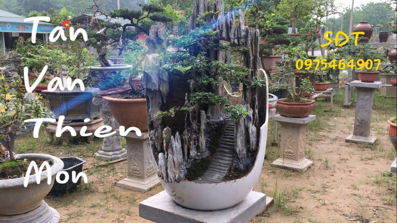 Tiểu cảnh bonsai mini tuyệt đẹp | SON 83