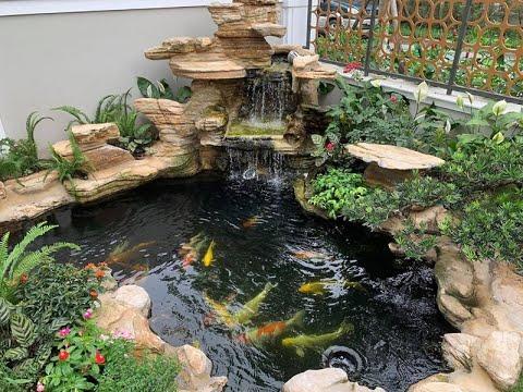 Tiểu cảnh hồ cá sân vườn đẹp cây cảnh bonsai