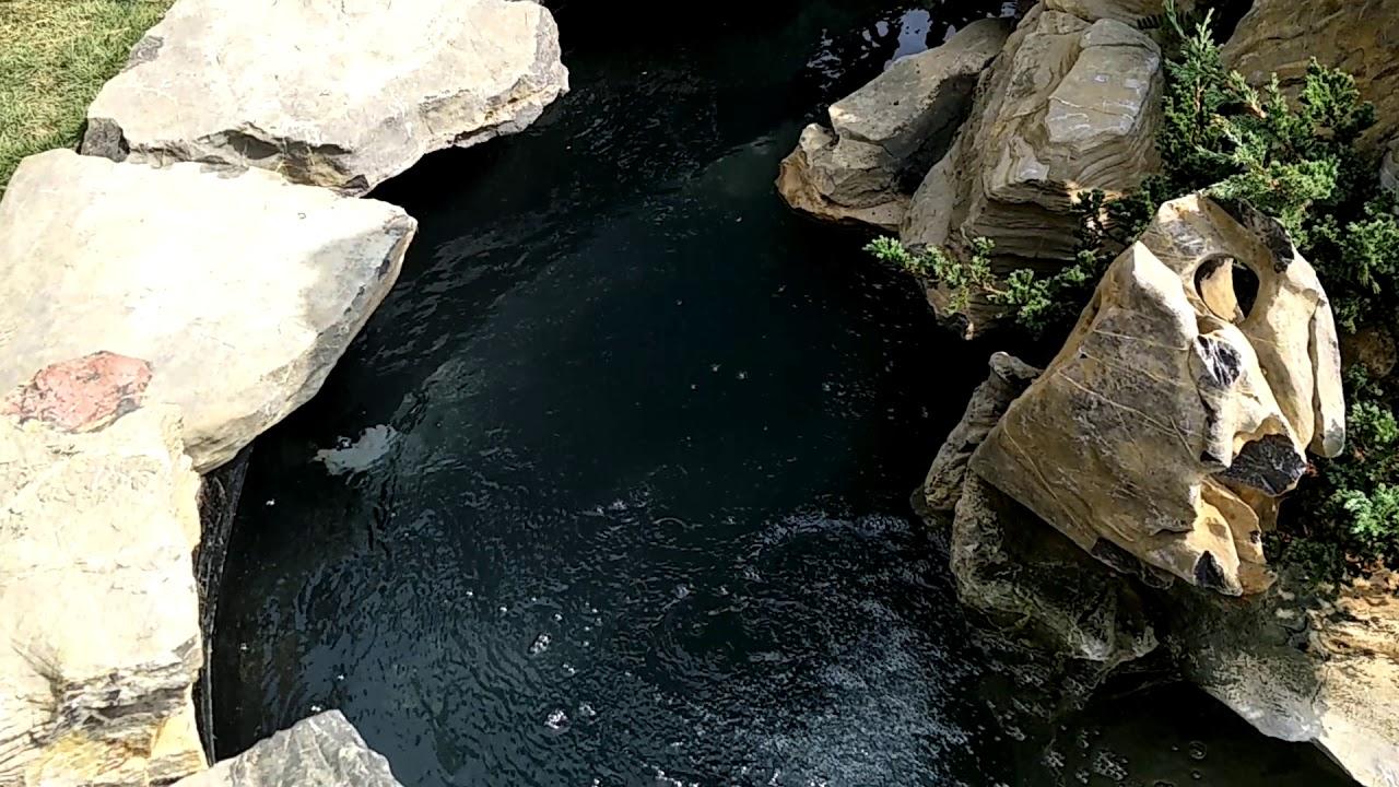 Tiểu cảnh sân vườn -non bộ -bể cá koi anh quân. ĐT 0988900434-0911131777