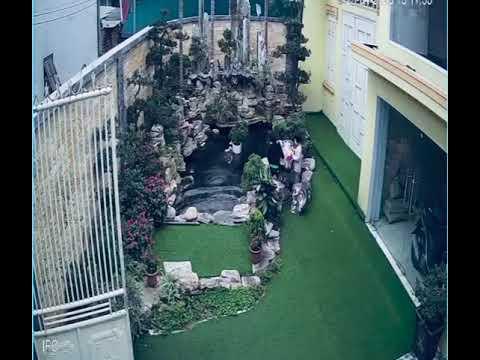 Tiểu cảnh sân vườn và sự bất cẩn rất nguy hiểm cho trẻ con .