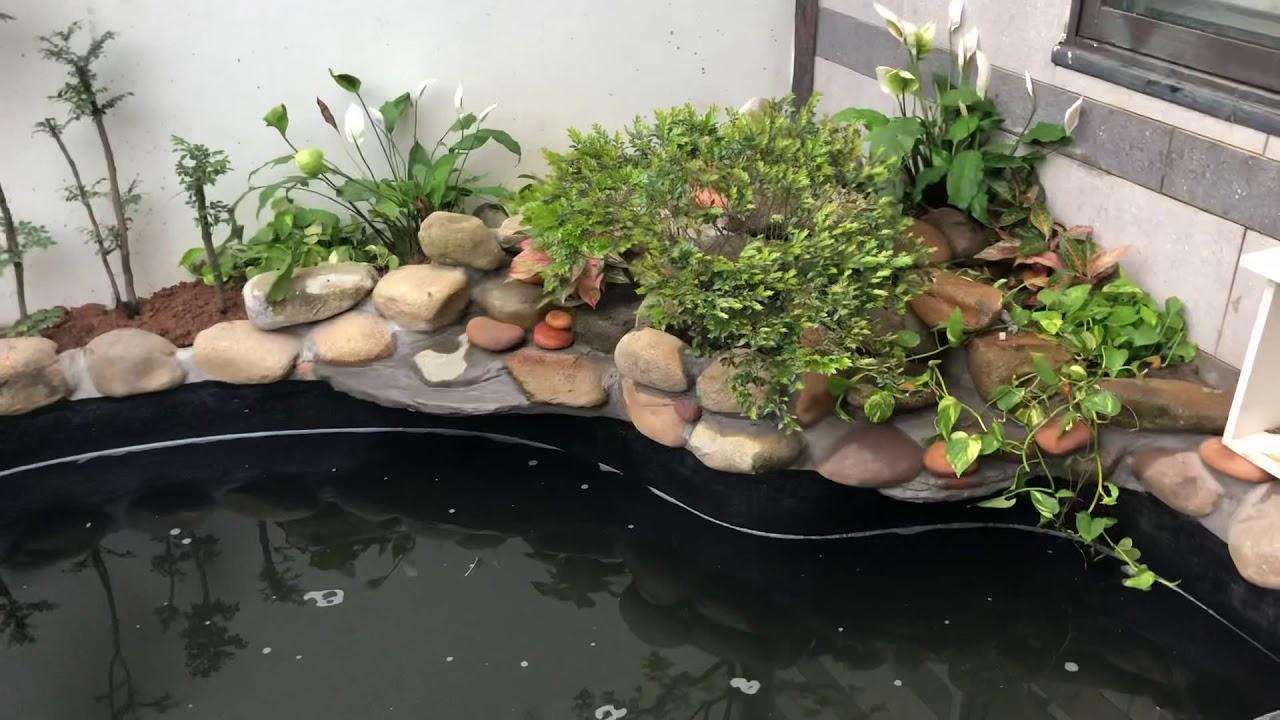 Trang trí tiểu cảnh sân vườn chuyên nghiệp tại Hà Nội