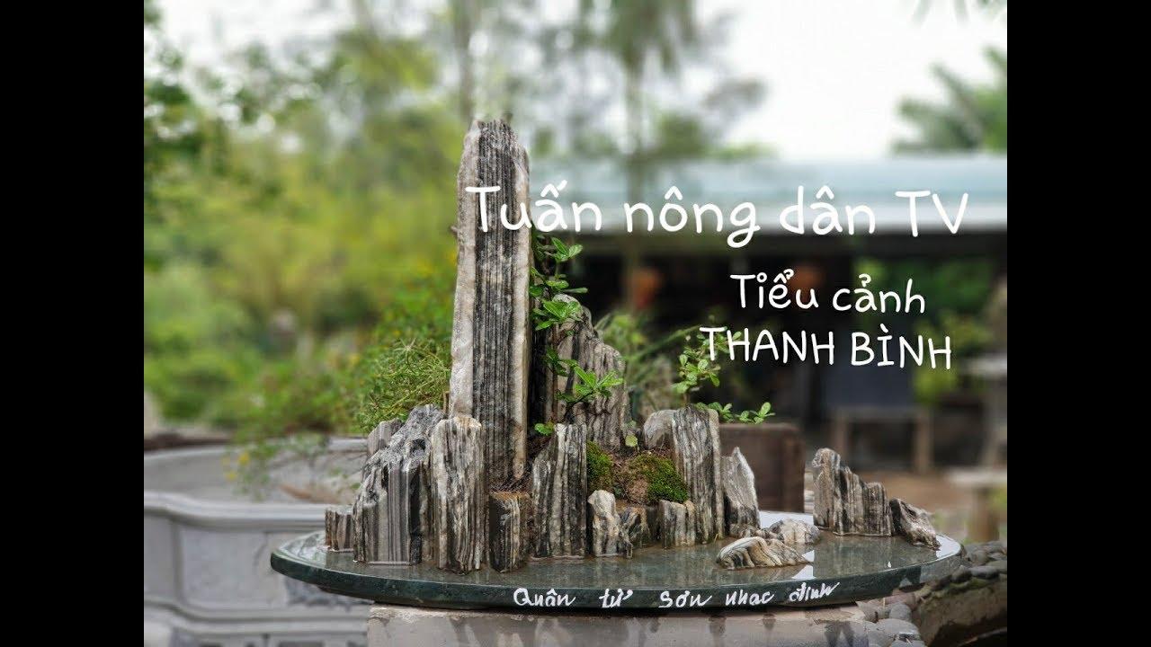 Vườn sinh thái, tiểu cảnh, non bộ, bonsai