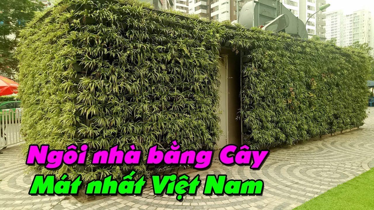 Xây nhà bằng Cây xanh 100% Cỏ Mọc Lan ll Ngôi nhà mát nhất Việt Nam