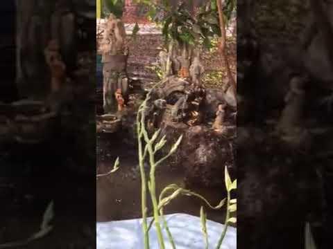 non bộ tiểu cảnh phối hợp với guồng nước bằng tre