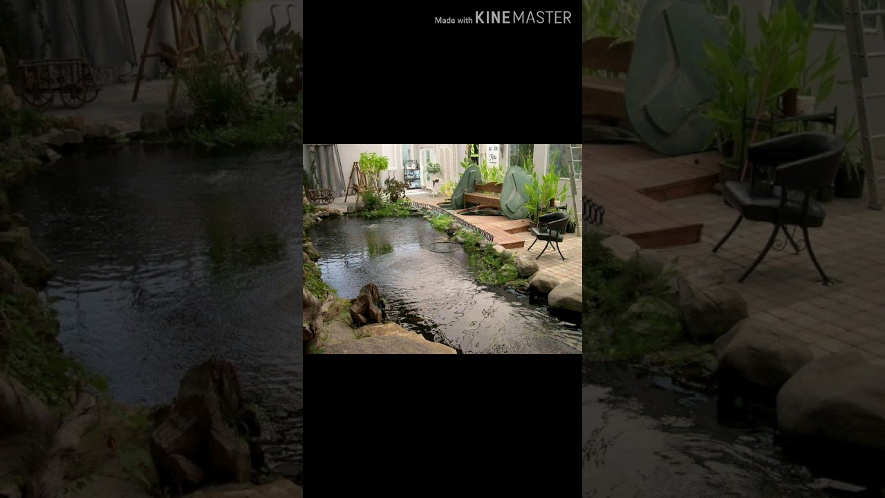 Bể cá , hồ cá , tiểu cảnh  sân vườn