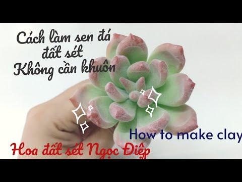 Cách làm sen đá đất sét KHÔNG CẦN KHUÔN/How to make clay|Ngoc diep clayflower